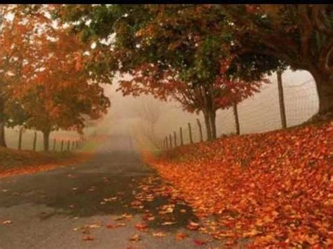 autumn leaves testo eric clapton autumn leaves andromeda theory