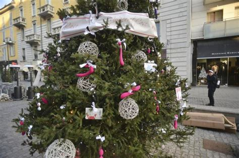 o christmas tree in italian tree of pleasure ordered to toys removed from its branches in milan italy