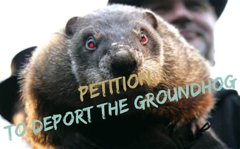 groundhog day you don t me petition to deport the groundhog high heels and