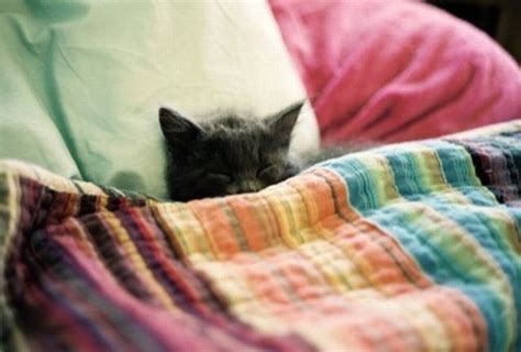 tucked in bed tuck me in