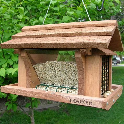 House Architectural Plans by Attracting Birds To Your Feeder Yard Envy