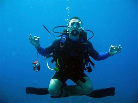 dive master padi padi divemaster course and internship in el nido palawan