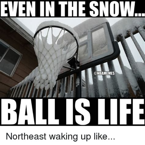 Ball Is Life Meme - 25 best memes about ball is life ball is life memes