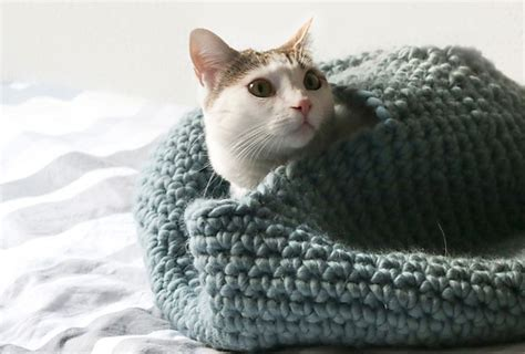 cat bed pattern free crochet cat bed patterns to make cat caves donuts