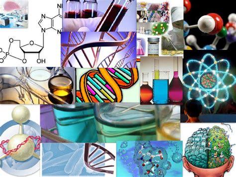 ciencia y tecnologia un avance mas para el futuro 10 curiosidades bioqu 237 micas sobre nuestro cuerpo el
