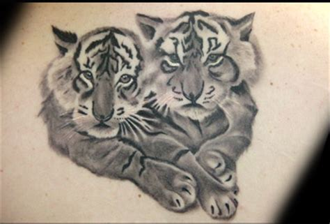 tigress tattoo designs tiger cubs tattoos pictures of tiger