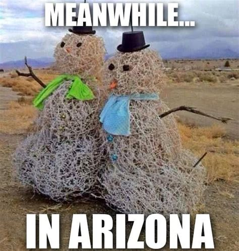 Arizona Memes - 2067 best images about humor cleanish on pinterest
