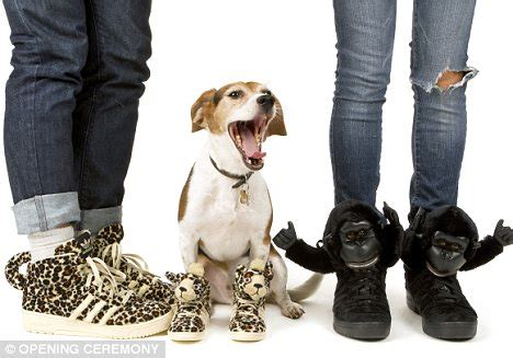 shoes with dogs on them designs animal sneakers for adidas and models them on a daily mail