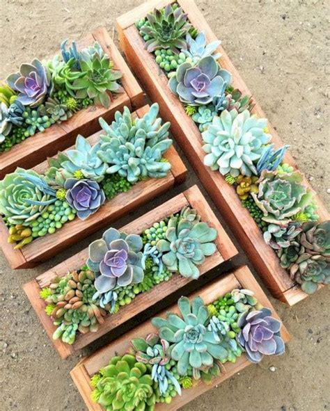 Small Container Garden Ideas Small Succulent Container Garden Ideas 10 Small Succulent Container Garden Ideas 10 Design