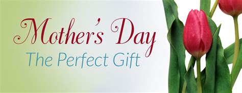 what is the best gift for s day mother s day gift
