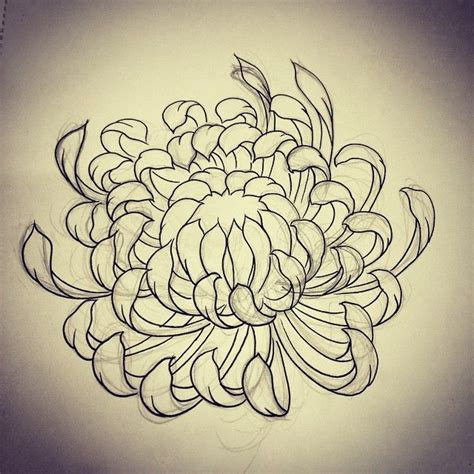 chrysanthemum tattoo design 41 best chrysanthemum designs small images on