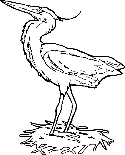 free coloring pages of great blue heron