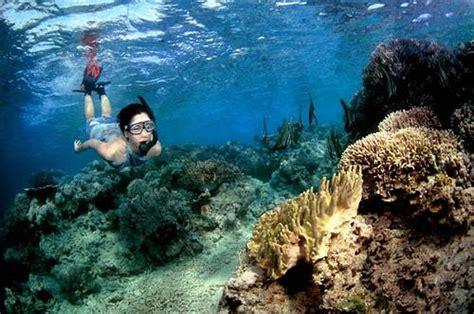 Tidung Island Diving Trip uninhabited paradise menjangan island bali travel guide