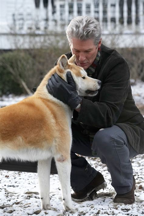 what of is hachi hachiko images hachi and the professor hd wallpaper and background photos 26118911