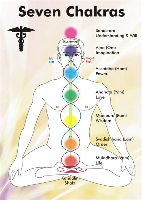 Holistic Healings with Chakras   the energy centre   #ByeByeDoc