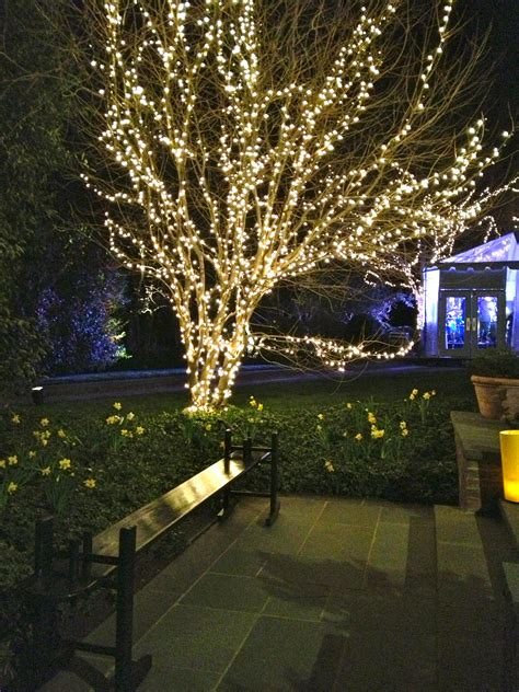 outdoor tree lighting ideas the welcoming house and the fabulous party the english room