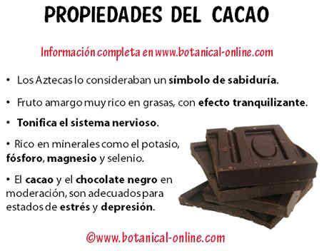 propiedades medicinales del chocolate  imagenes