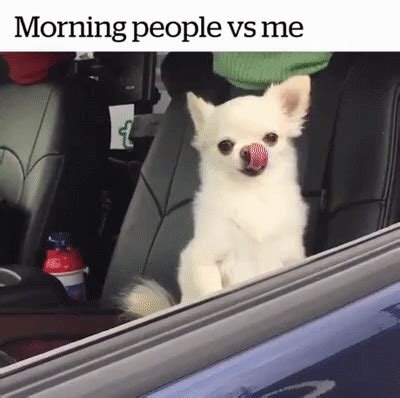 Morning People Meme - morning people vs me istackr com