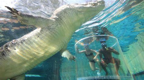 imagenes bellas e impresionantes las 10 piscinas m 225 s bellas y espectaculares del mundo la