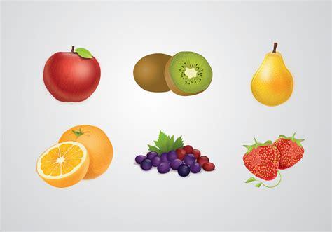 fruit vector fruits vector free vector stock graphics