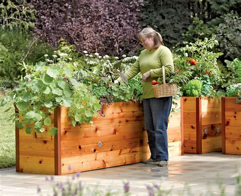 raised cedar planter box elevated planter box allows you to plant from any place