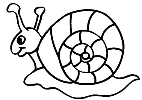 Snail Colouring Pages Snail Printable Coloring Sheet For Kids by Snail Colouring Pages