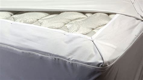 bed bug mattress cover reviews protects your mattress box spring and pillows from bed