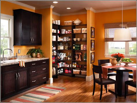 Alternative To Kitchen Cabinets by Ideas For Custom Kitchen Cabinets Roy Home Design