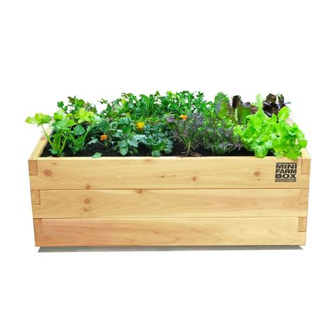 rolling patio planter eartheasy