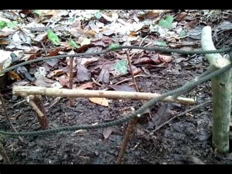 survival traps and snares presure trigger bird snare www