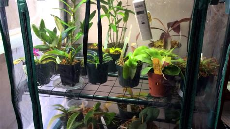 cheap diy indoor grow chamber  warm