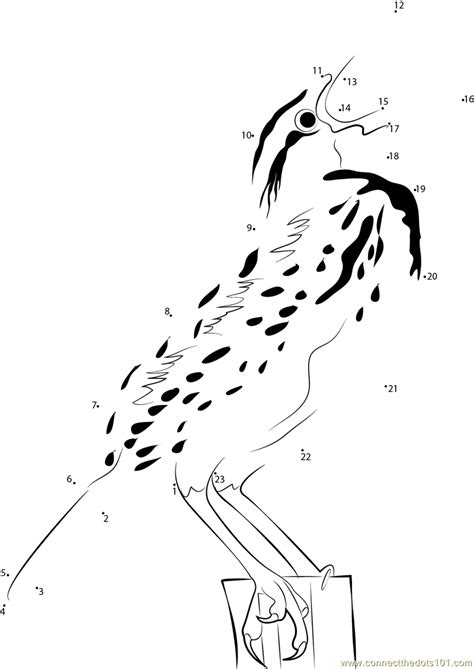western meadowlark coloring page coloring pages