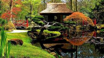 backyard japanese garden design ideas