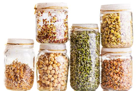 whole grains harvard are sprouted grains more nutritious than regular whole