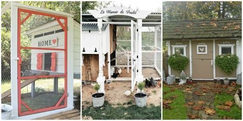 Chicken Coop Decorating Ideas by Chicken Coop Decorating Ideas Chicken Coop Plans