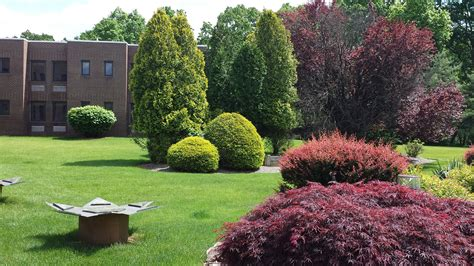 Regency Gardens Wayne Nj by Visit To The Mountain Rehabilitation And Care