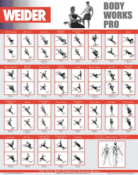 best 25 workout chart ideas on
