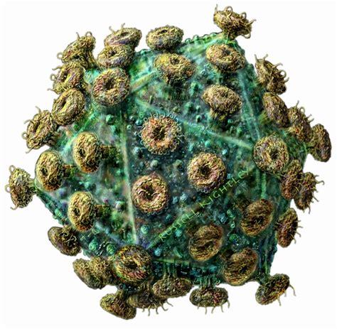 Obat Arv Aids berbagai kekeliruan menyikapi pengobatan alternatif yang