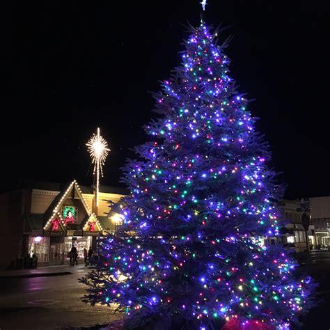 100 christmas trees bellingham wa lynden in lights