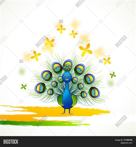 National Bird Of India Outline by Beautiful Indian National Bird Vector Photo Bigstock