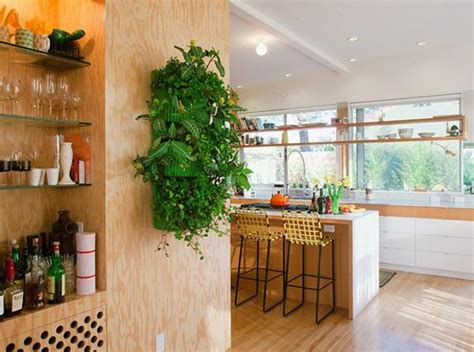 plants in the kitchen how to decorate kitchen with green indoor plants and save