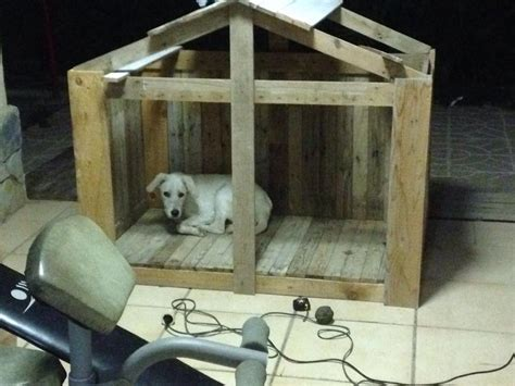 Animal Shelters Made From Pallets Pallets Designs