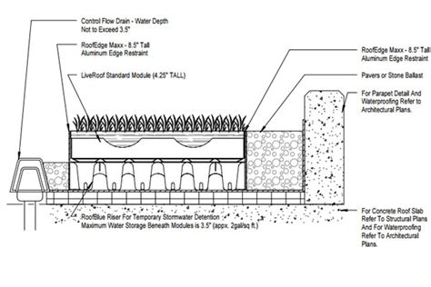 green roof section dwg detail drawings liveroof hybrid green roofs