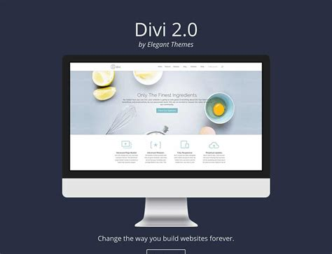 30 Best Landing Page Wordpress Themes 2016 Athemes Divi Landing Page Template
