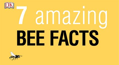 7 Facts On by 7 Amazing Bee Facts