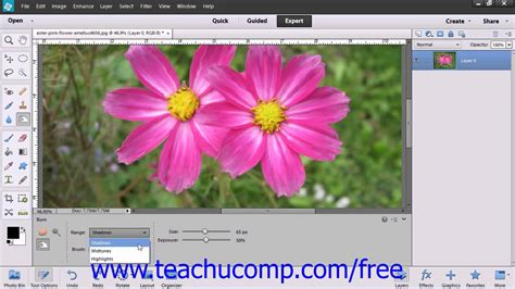tutorial adobe photoshop elements 13 photoshop elements 12 tutorial using the dodge tool the