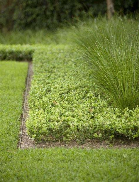 Landscape Horticulture Definition Best 25 Landscape Edging Ideas On Flower Bed