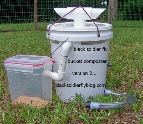 backyard chickens and flies 17 best chicken coops images on pinterest chicken coops