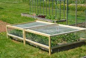 how to plant strawberries in a raised bed i like the idea removable covers cages for strawberry
