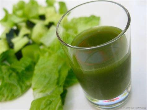 Cilantro Detox Juice by 1000 Images About Cilantro Juice Recipes On
